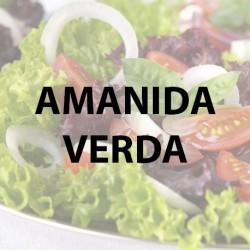 amanida verda 1